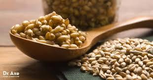 wheat germ benefits the gut heart