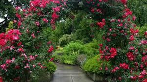 secret garden hd wallpaper 36923