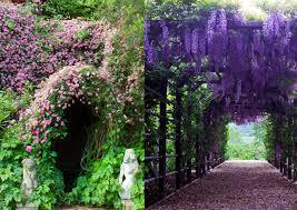 how to create an enchanted garden
