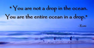 You are not a drop in the ocean.You are the entire ocean in a drop ...