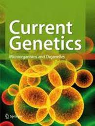 Nucleotide modification of tRNA in. the yeast Saccharomyces cerevisiae is  not Affected by the ψ factor which modulates suppression efficiency |  SpringerLink