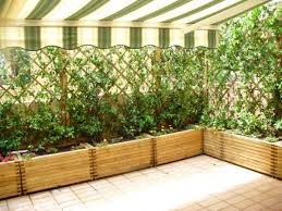 Heart Stopping Diy Living Fence Art Ideas Diy Projects