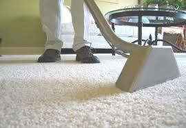 streamline carpet cleaning carpet