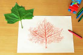 Leaf Rubbings   Kids' Crafts   Fun Craft Ideas   FirstPalette.com