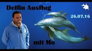 delfinausflug mit mo hurghada