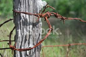 Weathered Fence Post With Barbed Wire Stock Photos Freeimages Com