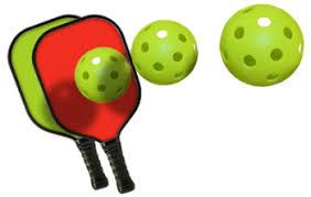 Image result for pickleball