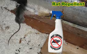 rat repellent natural home remedy