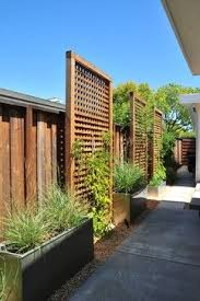 Even Lattice With A Smaller Opening Between Slats Can Allow The Vines To Crawl And Line The Sides Of Overha Privacy Fence Landscaping Backyard Privacy Backyard