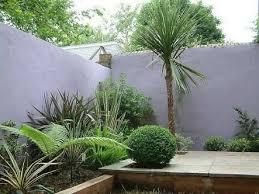 landscaping nz lush punga