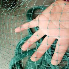 Big Offer Abdf 2m 10 M Garden Fence Mesh Green Color Safety Poultry And Pets Simple Breeding Net Fishing Net Gardening Net Bird Net Cicig Co