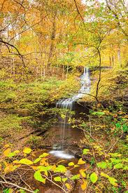 Fall Hollow In Autumn Photograph by Jordan Hill