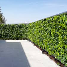 Balcony Terrace Outdoor Dining Privacy Fence Artificial Hedge Panels Modern Patio Houston By Greensmartdecor Houzz Ie