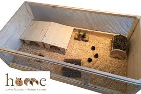 large indoor guinea pig cage c c style