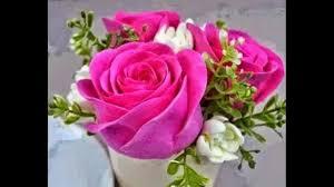 اجمل صور الورود البرية في العالم Youtube