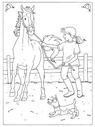 Kleurplaat Dressuur Wedstrijd Paard Horse Coloring Books Horse