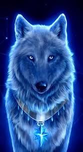 wolf wallpaper cool images