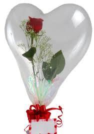 rose balloon thorp wi florist