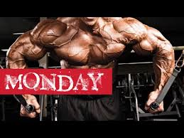 best daily gym workout routine monday