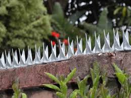 Deterrent Wall Spikes Protecting Your Families Diy Home Security Home Security Tips Security Fence