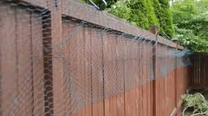 Diy Cat Fence Fence Design Backyard Fences Cat Fence