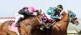 indiana grand racing