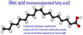 saturated vs unsaturated fats
