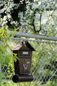 Spring Mailbox Cherry Fencing View Enjoyable Letter The Fence Green Rays Of The Sun Pxfuel