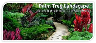 palm tree landscape placement of