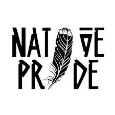 Yjzt 15 10cm Fashion Native Pride Feather Decals Vinyl Car Stickers Black Silver S8 1565 Car Sticker Vinyl Car Stickersstickers Black Aliexpress