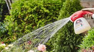 best hose end sprayer yard work hq