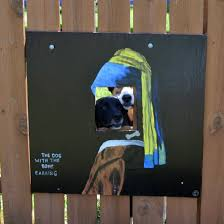 These Guys Make Neighborhood Laugh With Creative Fence Windows For Dogs