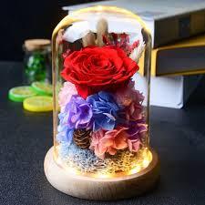 whole preserved flower hydrangea
