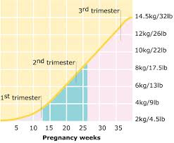 17 weeks and 3 days pregnant