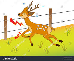 Deer Which Got Shocked By Electric Stock Vector Royalty Free 510189778