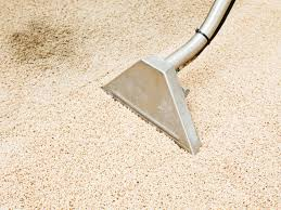how to get pet sns out of carpet diy