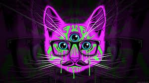 meow illuminati wallpaper hd