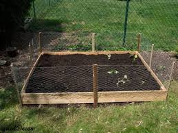 Chicken Wire Helps You Set Up Chicken Run To Protect Poultry