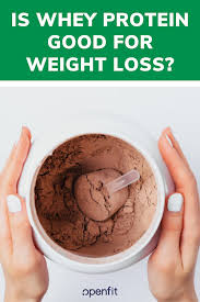 is whey protein good for weight loss