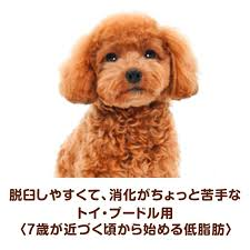 since 7 years old for the toy poodle