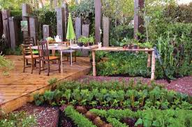 easy kitchen garden step by step