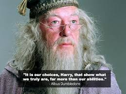 harry potter and the chamber of secrets quotes harry potter