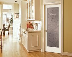 frosted glass pantry pocket door door