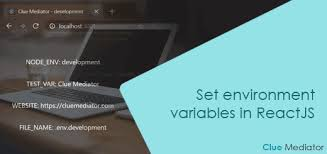 set environment variables in reactjs