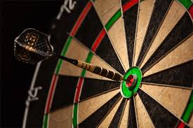Image result for daRTS