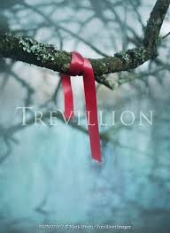 Trevillion Images Mark Owen Red Ribbon Tied Around Tree Branch Ob3
