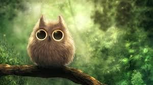 cute owl wallpaper desktop