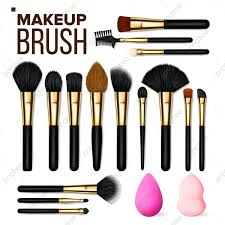 makeup brush set vector cosmetic beauty