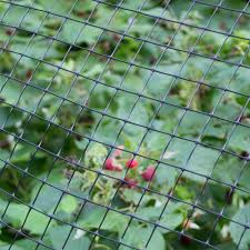 Garden Patio 5m X Plastic Mesh Garden Netting Flexible Fencing Plant Barrier Green Athena Com Pe