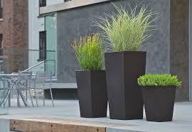 modern outdoor gardening